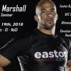 Underrated MMA Coach #2  Elliot Marshall